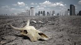 Ученые выяснили, когда произойдет вымирание всего живого наЗемле