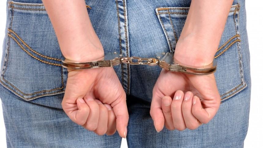 Задержана подозреваемая впохищении 20 тысяч долларов увдовы Евгения Леонова