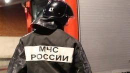 Названы предварительные версии крушения вертолета под Воронежем