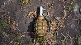 Неизвестный бросил гранату вдевушку наюго-западе Москвы
