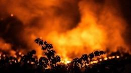 Лесной пожар вплотную подошел квоенной базе вКалифорнии