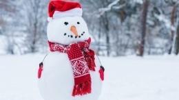 Предновогодний сюрприз: веселая компания вытоптала снеговика вовесь двор
