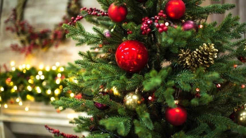 Голосуем засамую красивую! Кто иззвезд лучше всех украсил новогоднюю елку?