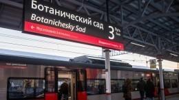 Обрушившаяся конструкция перегородила выход наМЦК «Ботанический сад» вМоскве