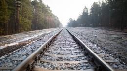 Настроительство железных дорог вРоссии потратят более 730 миллиардов рублей