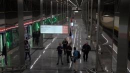 Видео: москвич прыгнул под поезд вметро итеперь будет оштрафован намиллион
