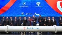 Президент Сербии запустил подачу газа посербской части «Турецкого потока»