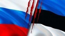 ВСовфеде оценили территориальные претензии Эстонии кРоссии