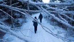 ВГидрометцентре предупредили обаномальном похолодании вряде регионов РФ