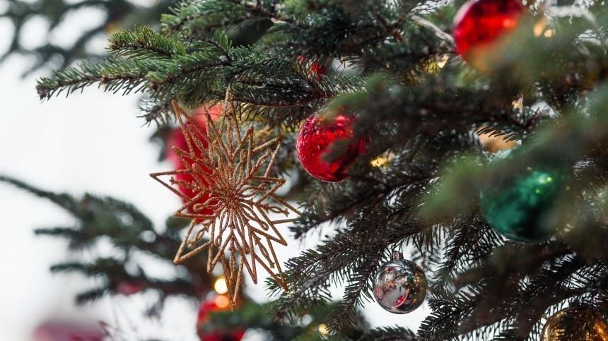 Пьяный вандал залез нагородскую елку вЯрославской области— видео