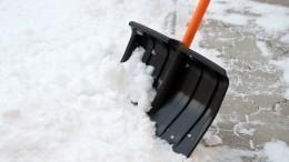 Момент падения лопаты скрыши дома наголову москвича попал навидео