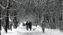 ВГидрометцентре рассказали, когда вевропейскую часть России придут морозы
