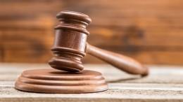 Суд поделам семьи вСША требует отОсиповой попытаться вернуть детей изРоссии