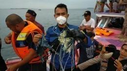 Путин выразил соболезнования главе Индонезии всвязи скрушением «Боинга»