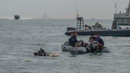Черные ящики сразбившегося индонезийского самолета нашли вЯванском море