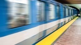 Ребенок упал нарельсы метро вМоскве— шок-видео