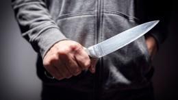 Напавший сножом наполицейских москвич сначала угрожал своей матери