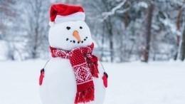 ВРоссии могут выписать первый штраф заразрушение снежных скульптур