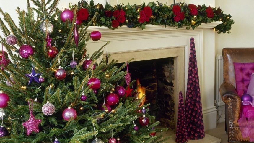 ВМЧС объяснили, почему новогодние елки нужно обязательно выбросить домая