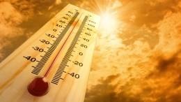 Аномальное потепление ждет Россию после крещенских морозов