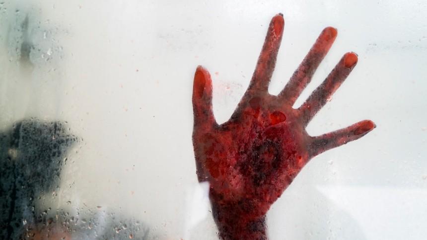 Голый петербуржец прогуливался поквартире рядом сокровавленным телом жены
