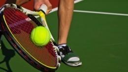 Домашний спорт-зал итурнир повидеосвязи: как теннисисты готовятся кчемпионату визоляции?