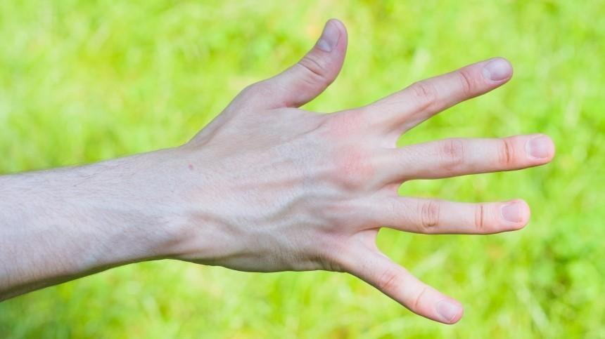 Что охарактере человека говорит длина пальцев руки?