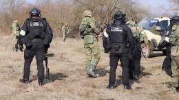 Видео сместа уничтожения банды боевиков вЧечне