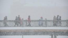 Сильные метели ожидают вПетербурге, Москву уже засыпает снегом— видео