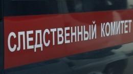 СКвозбудил дело ововлечении несовершеннолетних вакции протеста