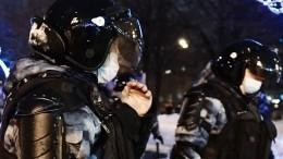 Полиция изучает видео сприменением силы кженщине вПетербурге