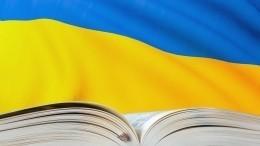 Без словаря: как языковая реформа наУкраине привела кнепониманию?
