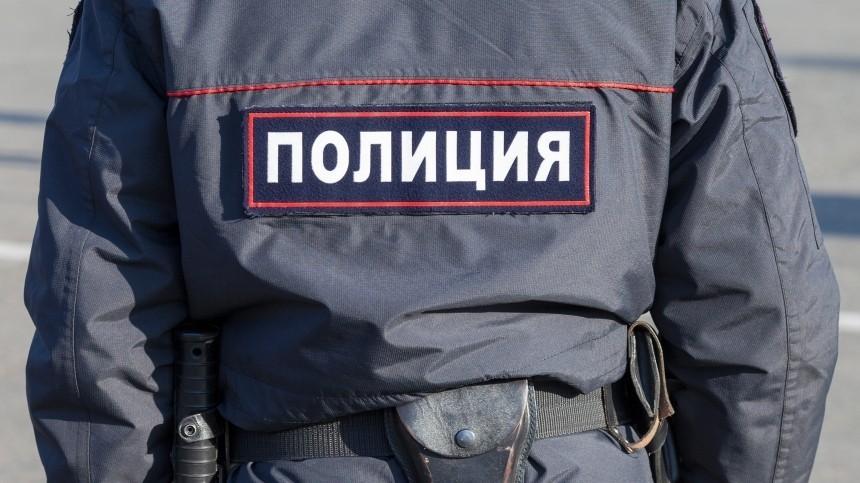 Полиция окажет помощь пострадавшей нанесогласованной акции вПетербурге