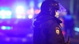 Полицейский извинился перед пострадавшей внесанкционированной акции вПетербурге