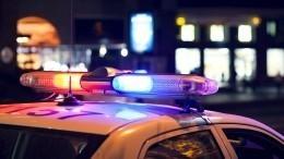 Напавшего насотрудников ДПС дебошира заключили под стражу вПетербурге