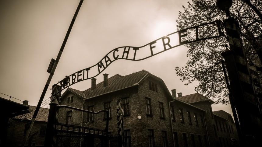 «Холокост— это миф»: ученый опроверг массовые убийства евреев вгазовых камерах