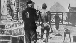 «Газ для дезинфекции»: профессор вПетербурге выступил слекцией, вкоторой отрицал холокост