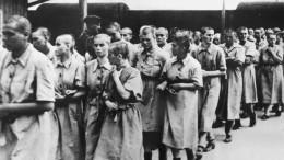 Отрицавшего Холокост профессора уволили изРАНХиГС вПетербурге