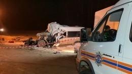 Вкаком состоянии пострадавшие вДТП смикроавтобусом под Самарой? —видео