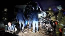 Семьи жертв ДТП смикроавтобусом под Самарой получат помиллиону рублей