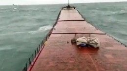Момент крушения сухогруза Arvin уберегов Турции попал навидео