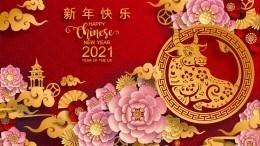 Год металлического Быка: Что ждет каждый иззнаков китайского гороскопа в2021-м?