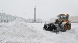 ВМоскве иПетербурге началось «арктическое вторжение»