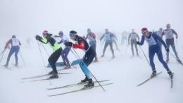 Налыжах всей семьей: стартовал Всероссийский лыжный забег «Большой перемены»