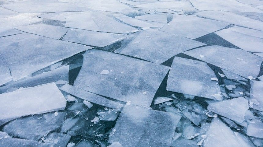 Трое детей провалились под лед вВоронежской области
