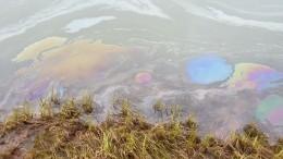 Власти Красноярского края предъявят претензии «Норникелю» заущерб природе