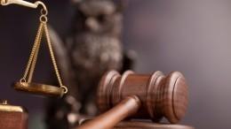 Адвокат назаседании суда случайно включил маску грустного кота— видео