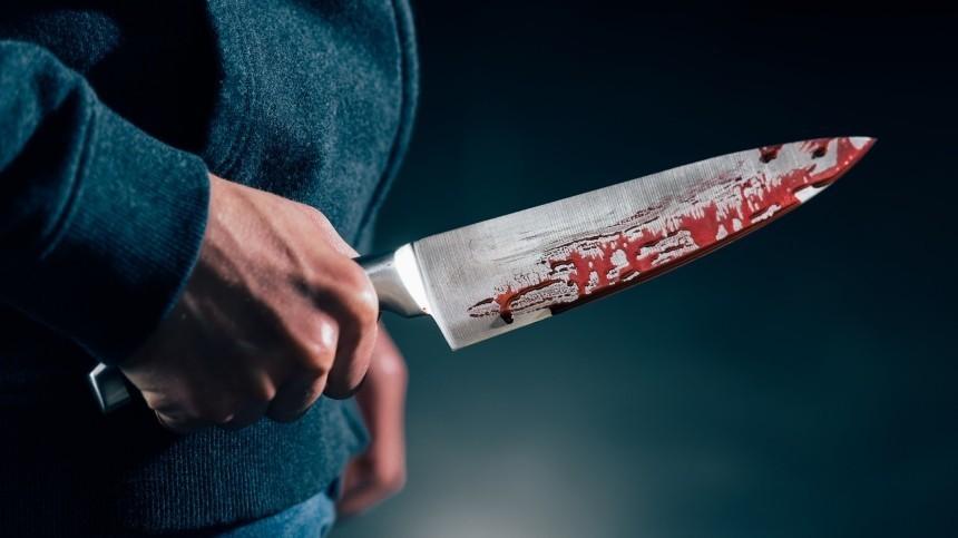 Стали известны подробности жестокого убийства женщины вЛенобласти