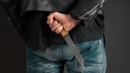 Стала известна возможная причина убийства ирасчленения женщины вЛенобласти