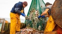 Квоты вобмен наинвестиции: Трутнев рассказал опутях развития рыбной отрасли